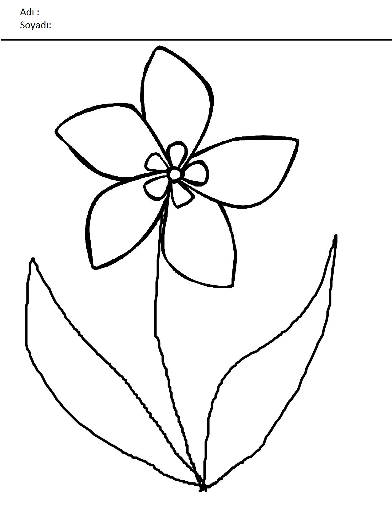 çiçekler Boyama Sayfaları Sayfa 8 8 Arabulokucom
