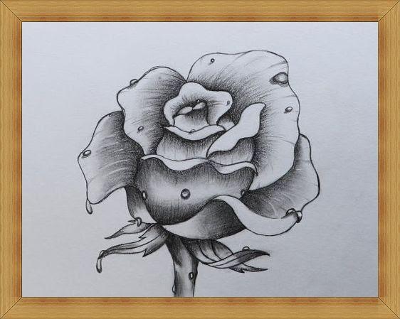 Gambar Sketsa Bunga Indah Mulai Dari Mawar Melati Anggrek Dan