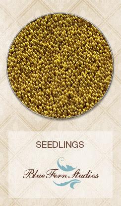 Seedlings - Mustard