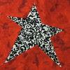 Linda's star #2
