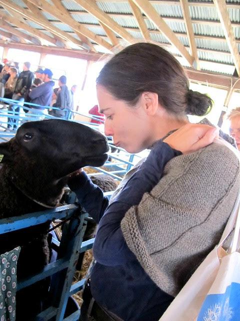 laura's black sheep soul mate