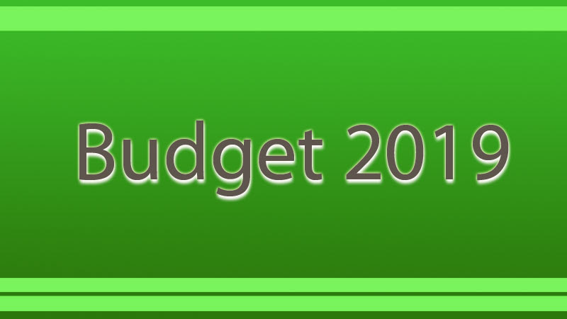HEALTH, EDUCATION TO GET Rs 290 bn in 2019