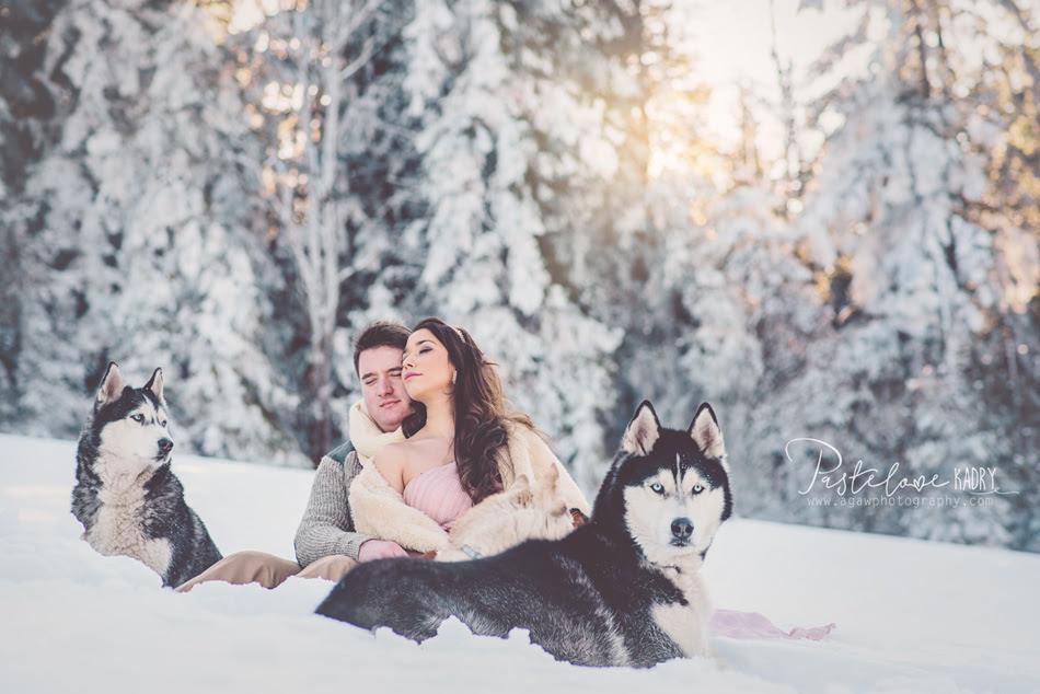 zimowy plener psy