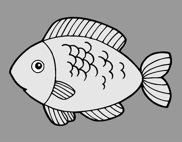 Dibujo Para Colorear Carne Pescado Imagui