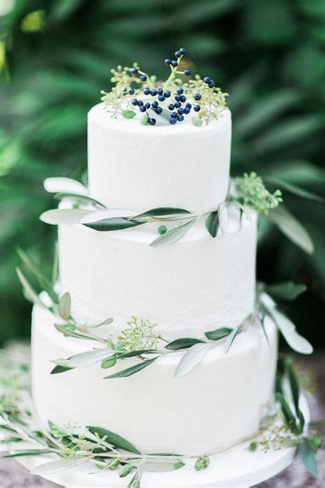 1000  ideas about Olive Branches on Pinterest   Weddings