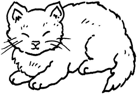 260 Dessins De Coloriage Chat à Imprimer Sur Laguerchecom Page 5