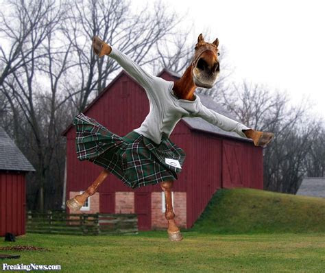 funny kilts pictures freaking news