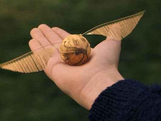 Znalezione obrazy dla zapytania mecz quidditcha