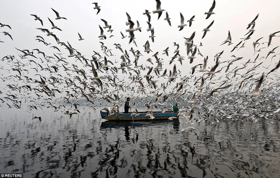 Men feed seagulls while taking a boat along the Yamuna river (also known as the Jumna) during a smoggy morning in New Delhi, India, on November 17