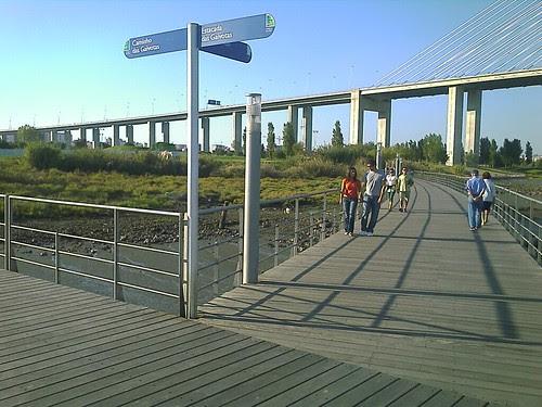 Pontes pedonais