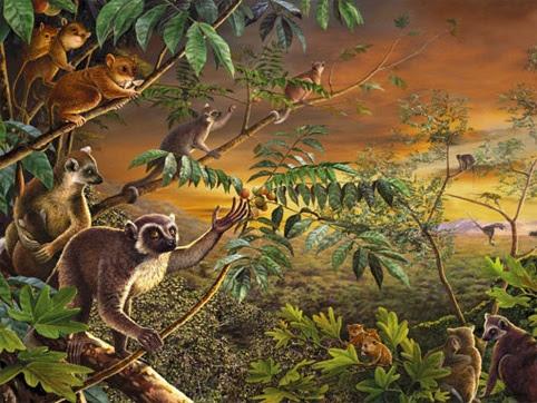 50 million years ago (Act IV).