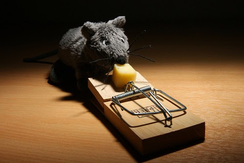 Mouse trap 1 by D-W-J-S