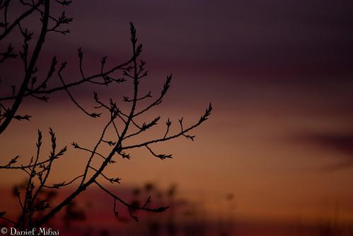 Fragile in the dark