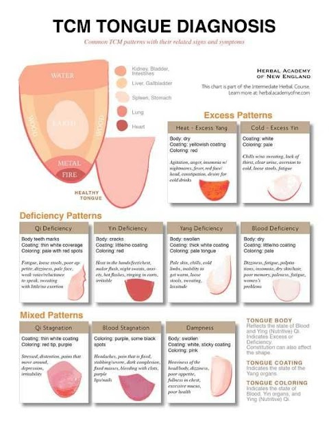 11+ What Does The Tongue Tell You In Chinese Medicine