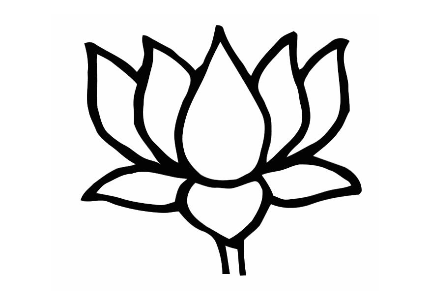 Drawing Skill Lotus Drawing Easy Step By Step