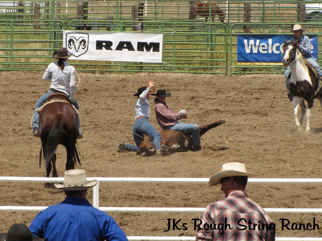 Kings River Gals~Ranch Doctoring