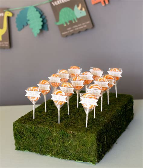 DIY Moss Lollipop Stand   Evite