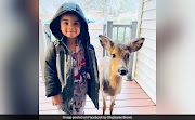 4-Year-Old Goes Out To Play, Comes Back With Baby Deer He Befriended