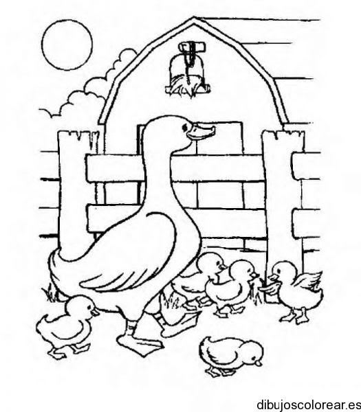 Dibujo De Familia De Patos