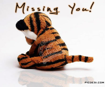 Missing You Sad Tiger Picture Picdesicom