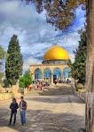 dome-rock-jerusalem-palestine-mosque-tree-sky