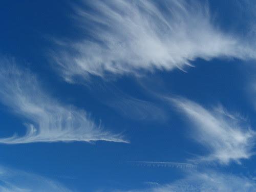 Dragon-clouds4