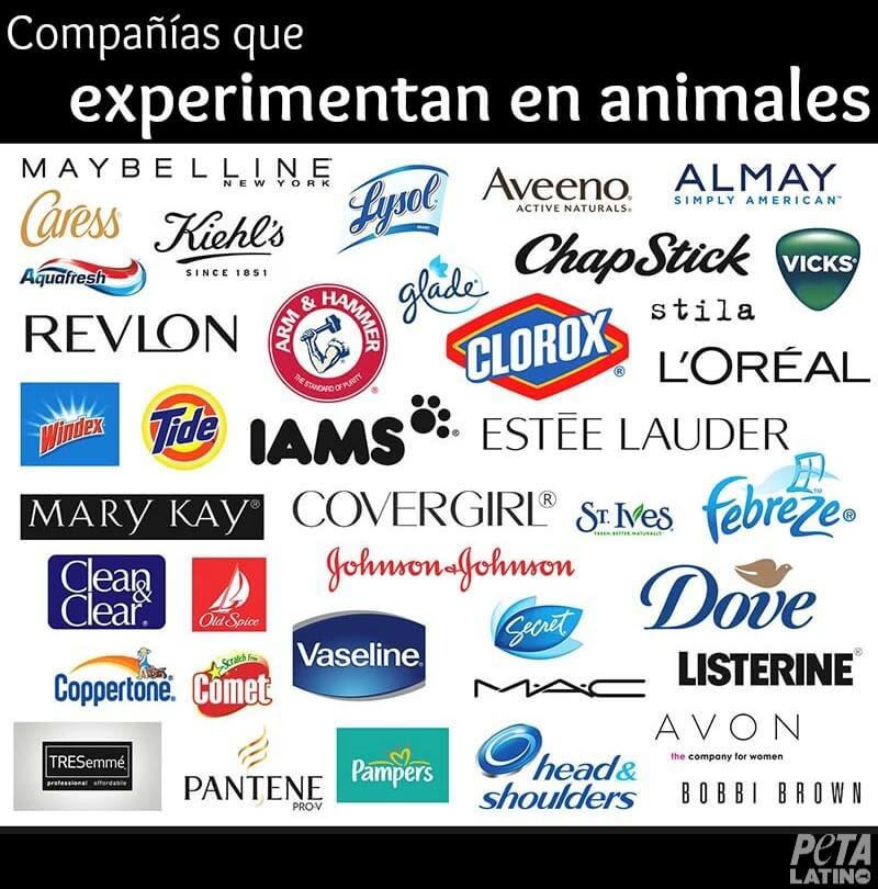animal testing companies spanish