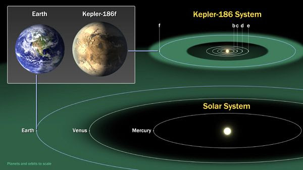 An artist's concept comparing the orbits of the Kepler-186 planets to those of Mercury, Venus and Earth.