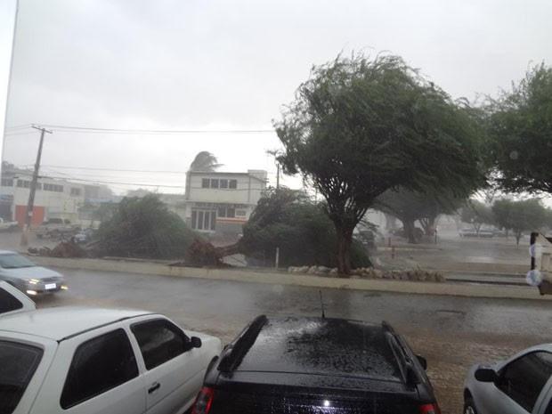 chuva forte em irecê (Foto: Divulgação/Irecê Repórter)