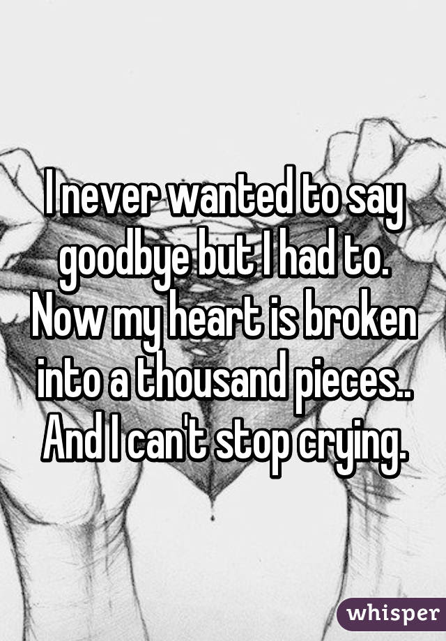 I Never Wanted To Say Goodbye But I Had To Now My Heart Is Broken Into