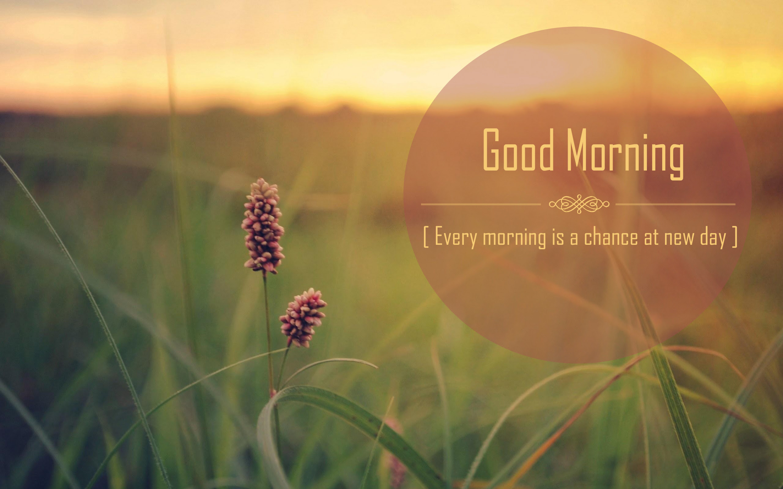 Best Good Morning Quotes. QuotesGram