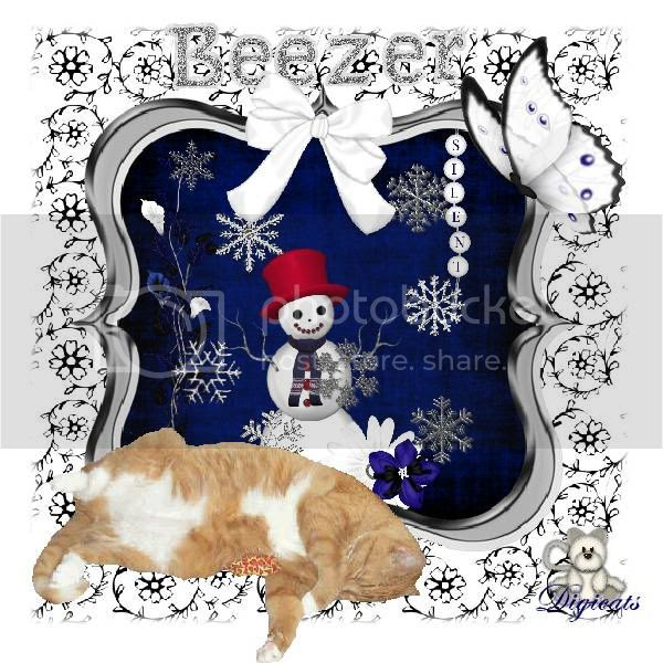 Ginger Cat,Tabby Cat,Domestic Cat,Snowcats Project,Snowman,Happy Holidays