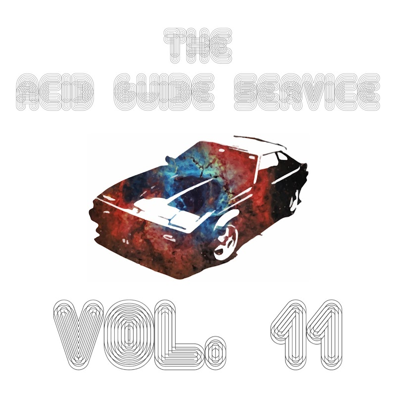 The Acid Guide Service - Vol.11 | Review