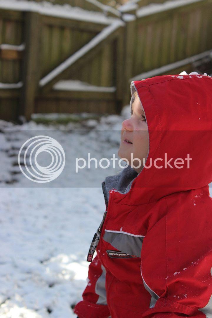 photo snow33_zpsdce9952c.jpg