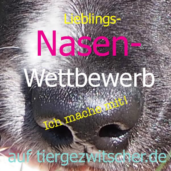http://tiergezwitscher.de/wp-content/uploads/2015/06/NasenwettbewerbMITMACH.jpg