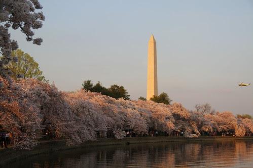 Washington DC Day 1 287-001