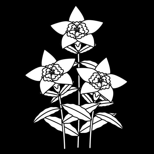 塗り絵に最適な白黒でかわいいりんどうの無料イラスト商用フリー