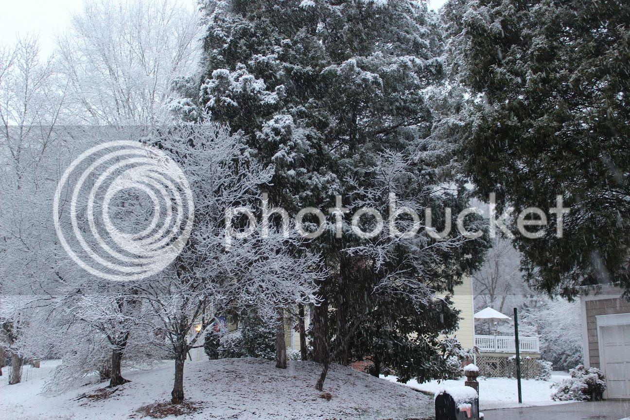 photo snow10_zps199fb901.jpg