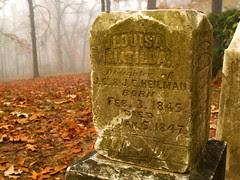 Cemetery in Burns Park