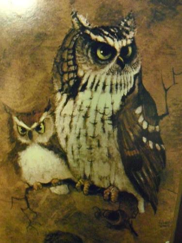Thrifted Owl Art