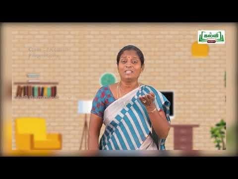 7th English Grammar Unit 1 Part 1 Kalvi TV