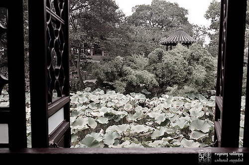 Samsung_NX100_Suzhou_20