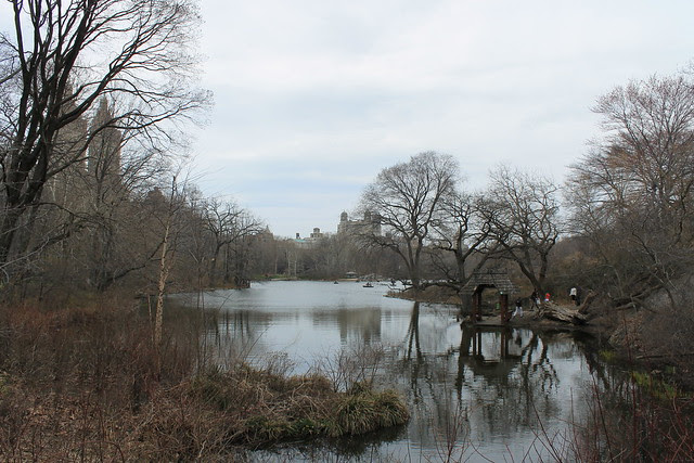 A Walk in Central Park