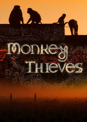 Monkey Theives - Season 3