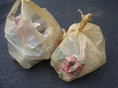 Franklin: recycles gathered on the walk