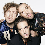How Busted Got Jonas Brothers Their First Top 40 Song - Gulfnews.com