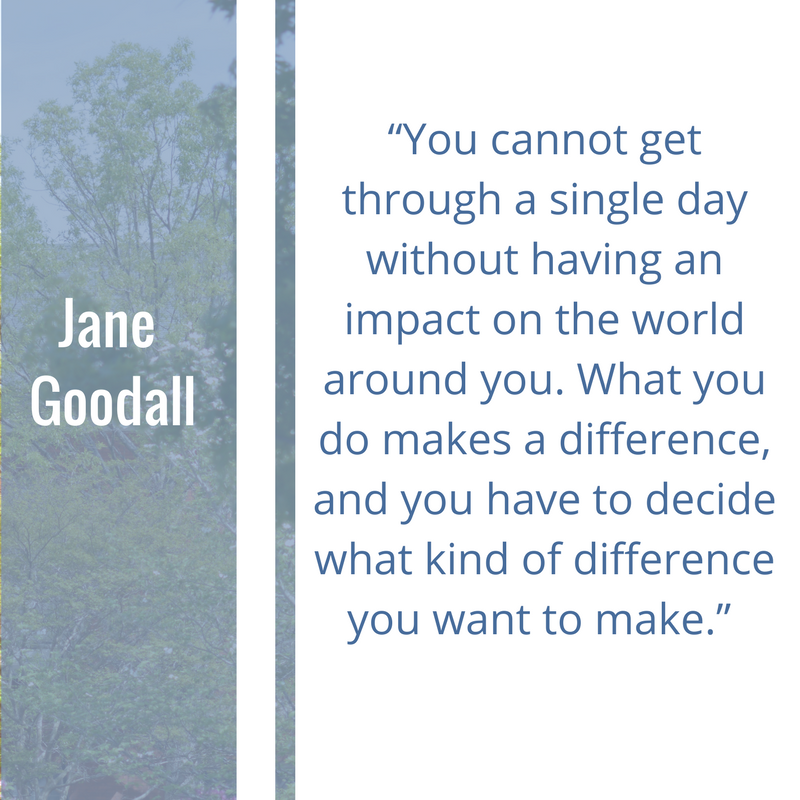 Quote Of The Week By Jane Goodall You Cannot Get Through A Single