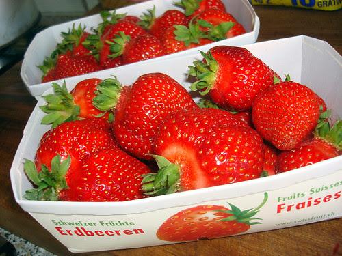 Thurgauer Erdbeeren Mai 2009