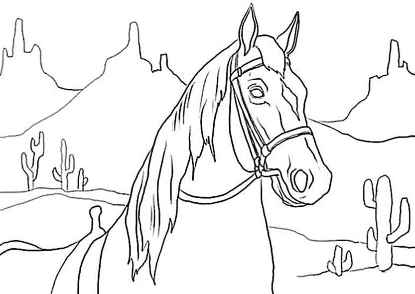 Pferde 9 Ausmalbilder Top