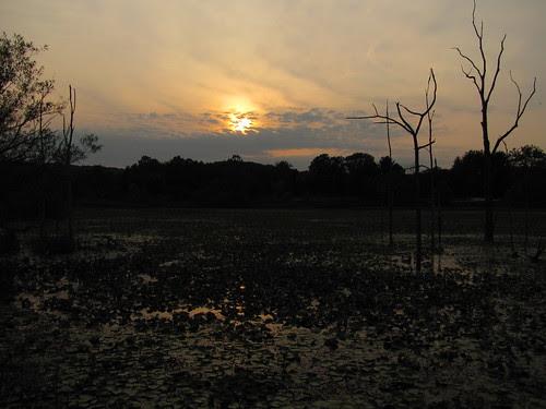 IMG_5441_Sunset_at_Beaver_Marsh